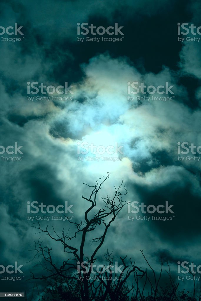 Dark, cloudy, stormy sky picture taken at field level  royalty-free stock photo