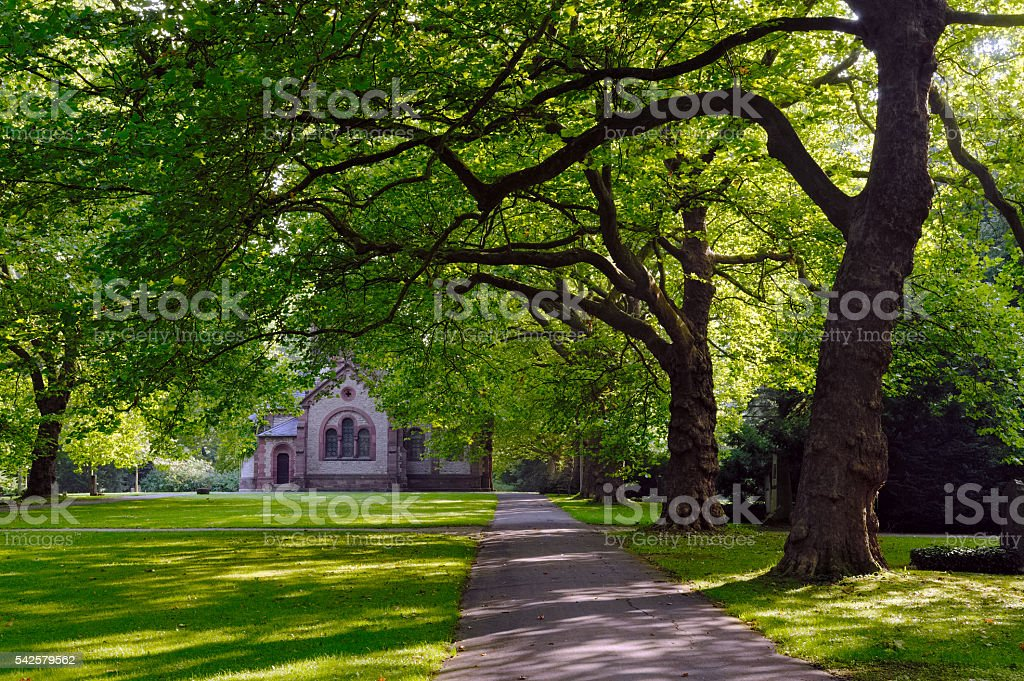 Dark dramatic scenery with big trees and church in cemetery stock photo