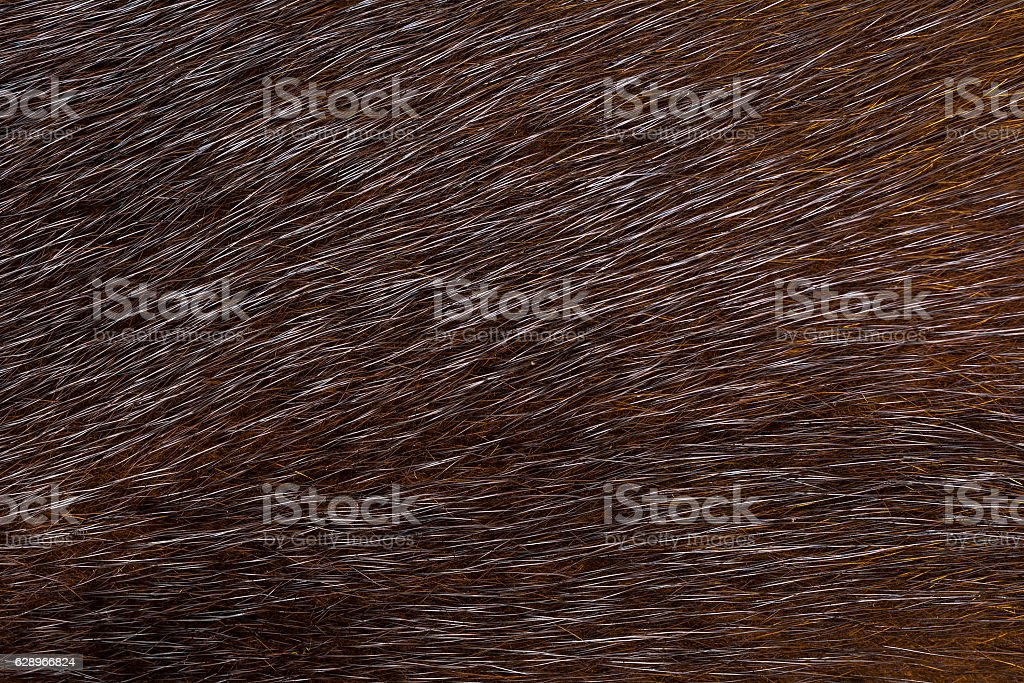 Dark fur mink. Fur texture. stock photo