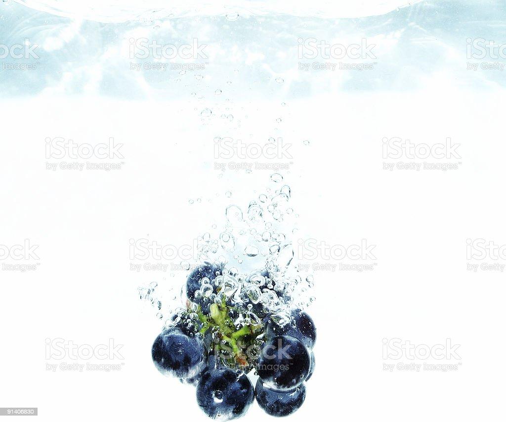 Dark grape royalty-free stock photo