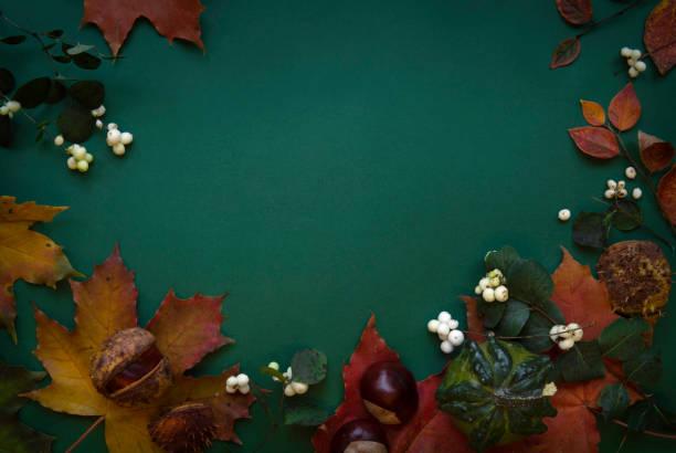 Dark green red autumn top view background frame stock photo