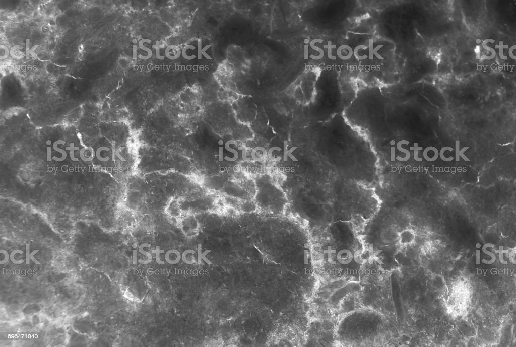 Dark Grey Marble Texture With Delicate Veins Stock Photo Download Image Now Istock