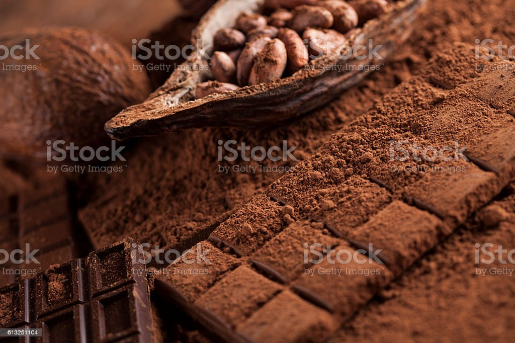 Dark homemade chocolate bars and cocoa pod on wooden – Foto