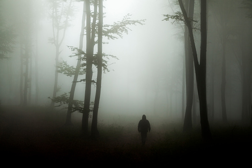 Dark horror man in creepy foggy forest