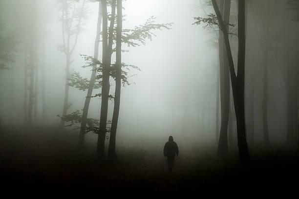 Dark horror man in creepy foggy forest - Photo