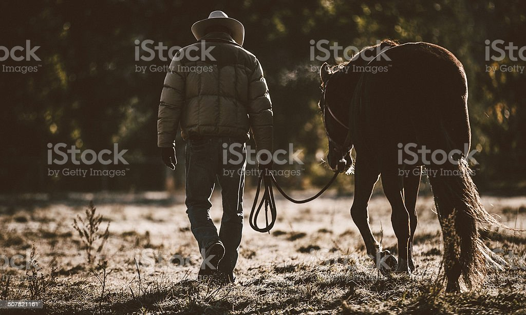 Dark image of man walking and guiding horse through field royalty-free stock photo