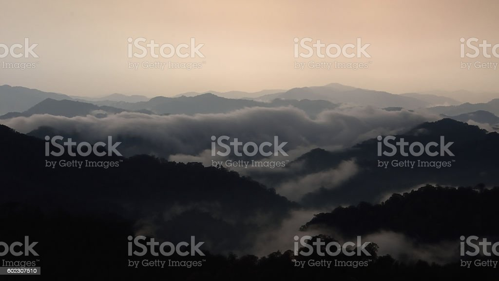 dark jungle tropical mountains landscape stock photo