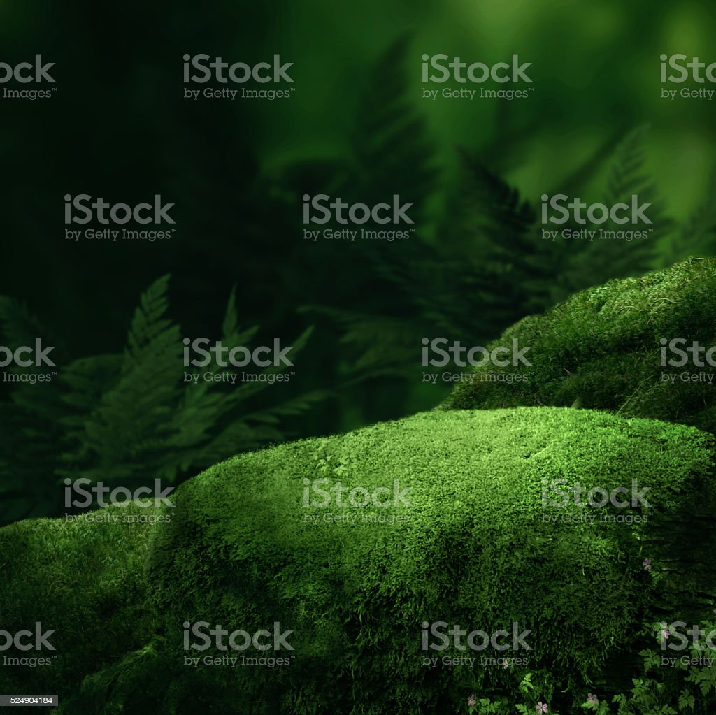 Dark magic forest stock photo