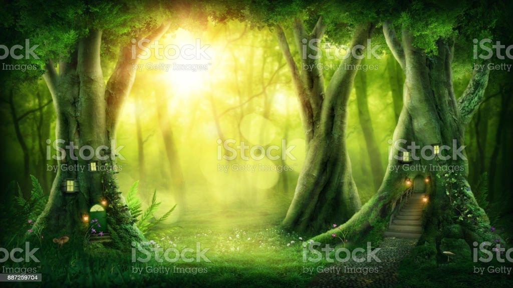 Dark magic forest stock photo
