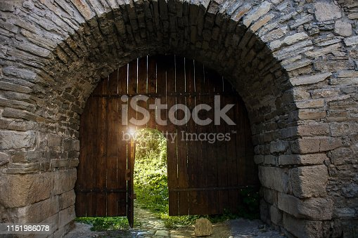 Old wooden open door. Dark medieval woods doorway to summer light secret garden