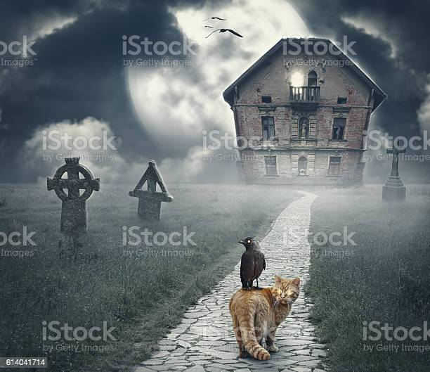 Dark mysterious halloween landscape with abandoned house picture id614041714?b=1&k=6&m=614041714&s=612x612&h=afuc 6wzv iwuvmx1zsypkxgzf0pdpx 0yqdwbhmdti=