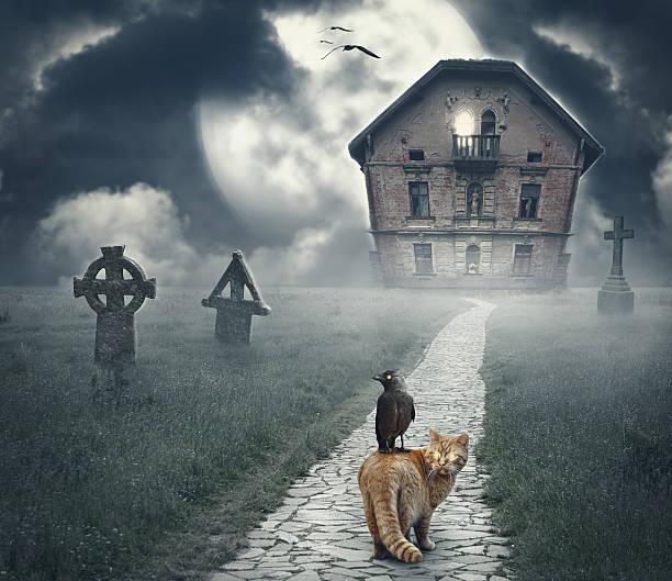 Dark mysterious halloween landscape with abandoned house picture id614041714?b=1&k=6&m=614041714&s=612x612&w=0&h=nou8mi0hphaictjvfjj gt05fpdbbl2861dmlam6uta=