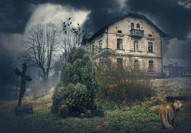 dark mysterious halloween landscape with old house - waldfriedhof stock-fotos und bilder