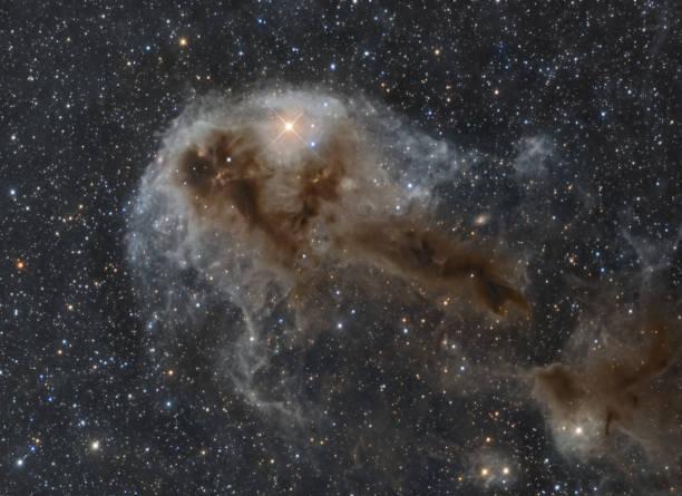 LDN 1250 1250, LDN Dunkelnebel im Sternbild Kepheus – Foto