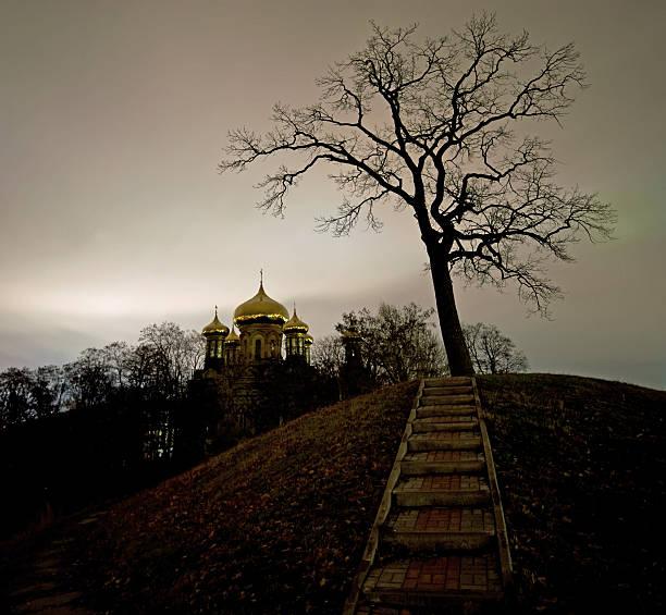 Dunkle Nacht-Landschaft – Foto