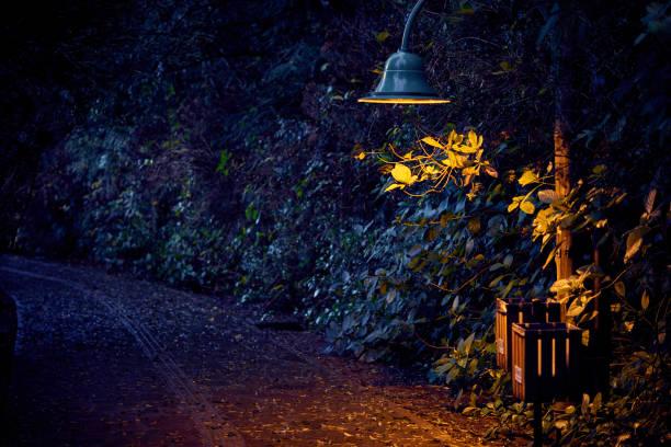 Dunklen Weg entlang dem schwarzen See bei Nacht mit Straßenlaterne Details. – Foto