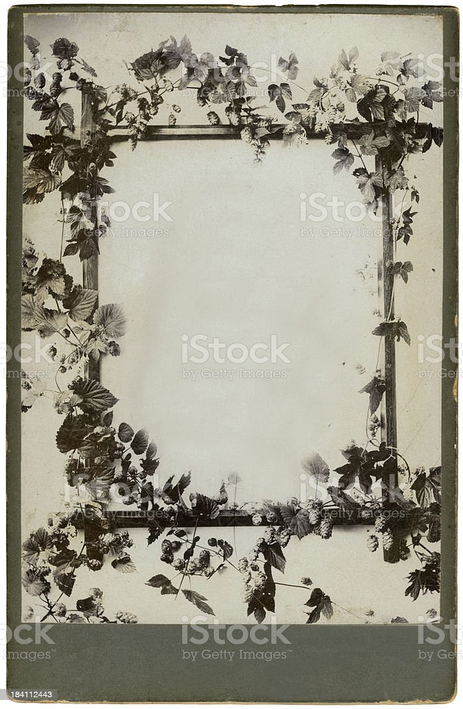 Dark photo frame with ornaments stock photo