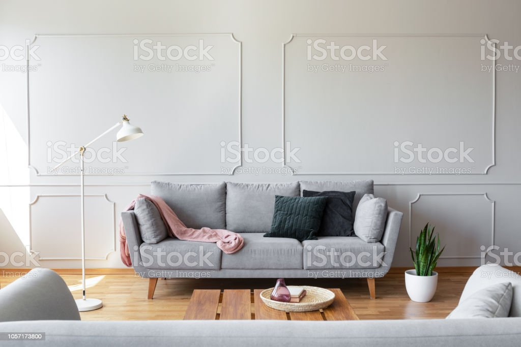 Dark pillows and pink blanket on the grey couch in stylish living room  interior with copy space and molding on the wall - Stock image . 10c2fa6a7
