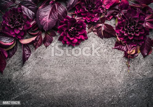 istock Dark purple floral border with flowers, petal and leaves on gray background, top view 888215628