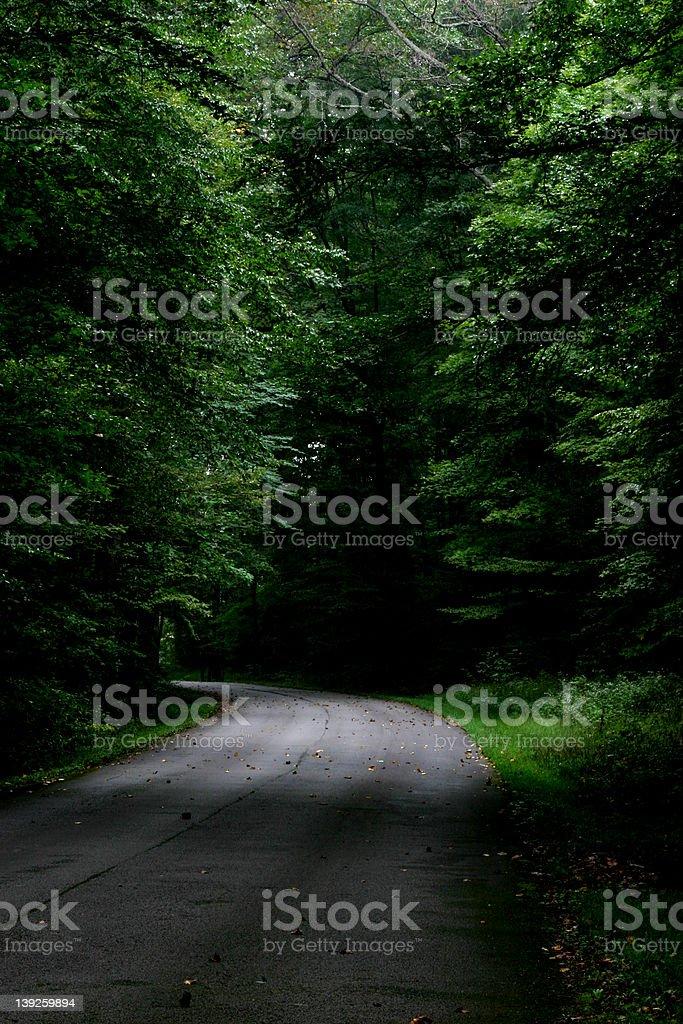 Dark Road royalty-free stock photo