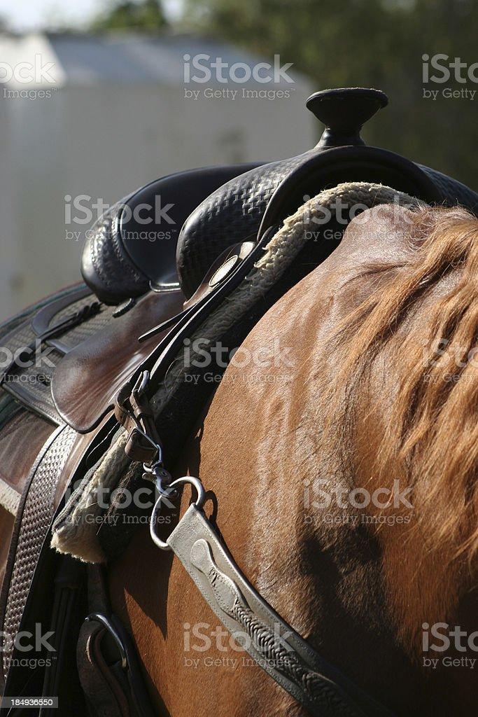 Dark Saddle royalty-free stock photo
