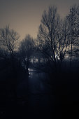Dark scene of soft stream and silhouettes of naked trees on a winter night with glow in background