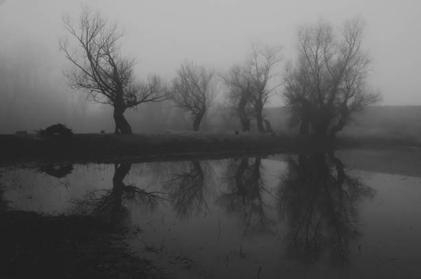 Dark spooky landscape stock photo
