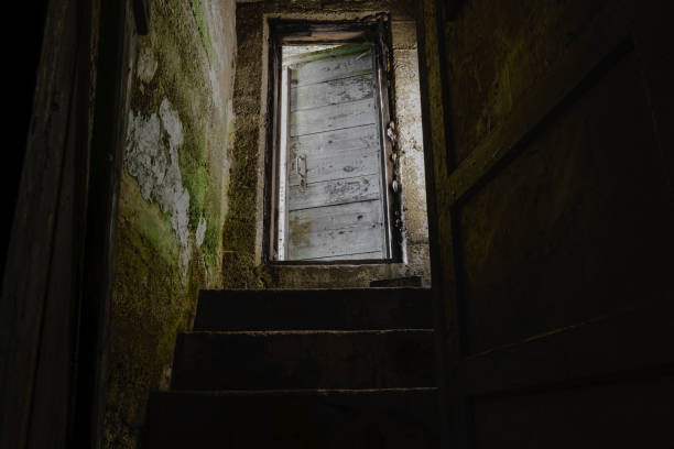 Dark stairs with old and white door leading down to dark basement Dark stairs with old and white door leading down to dark basement cellar stock pictures, royalty-free photos & images
