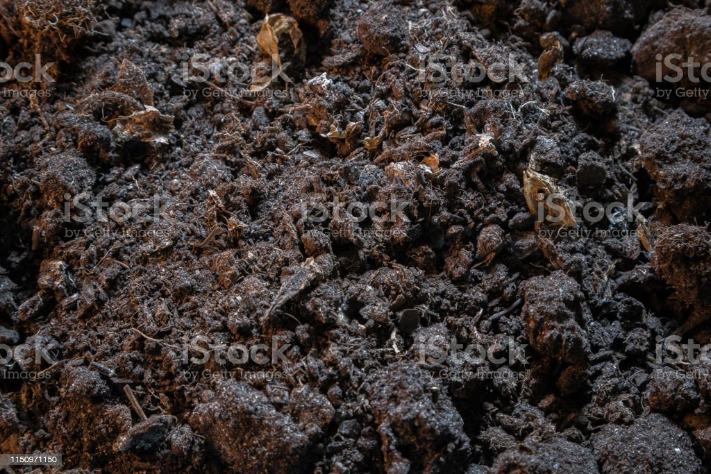 Dark texture of black dirt ground. Top view of black earth surface,...
