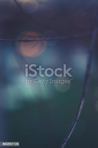 850558406 istock photo Dark toned background image of bare branches at night 850552126