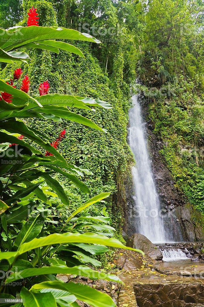 Dark View Falls, St Vincent stock photo