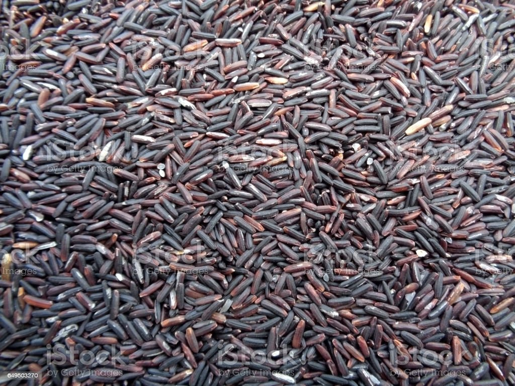 Dark Violet Color Rice-berry Rice, Raw Rice, for Background stock photo