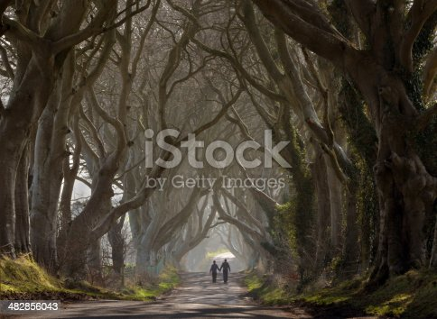 A winding road through a dark spooky wood with a distant couple in semi silhouette