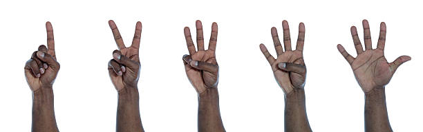 Dark-skinned hand counting stock photo