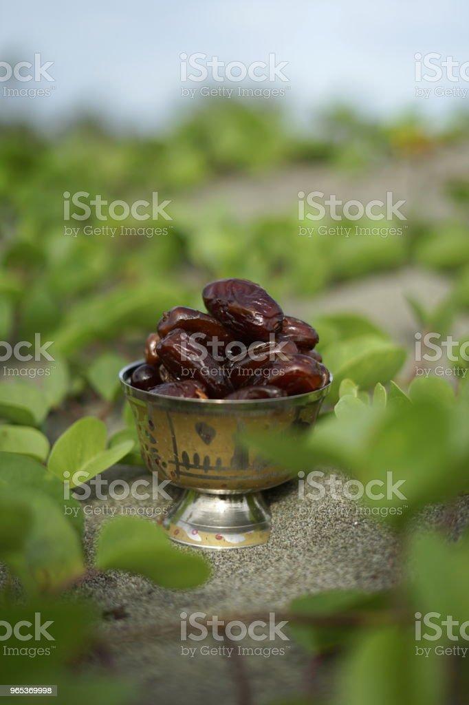 年份銀盤棗果 - 免版稅乾植物圖庫照片