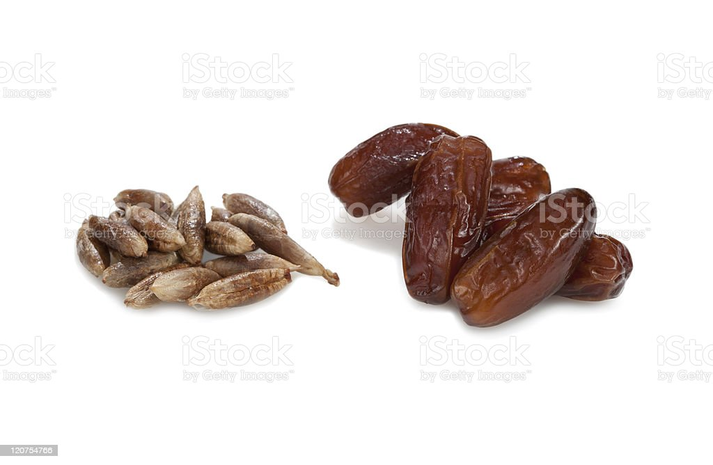 date-stones and dates. stock photo
