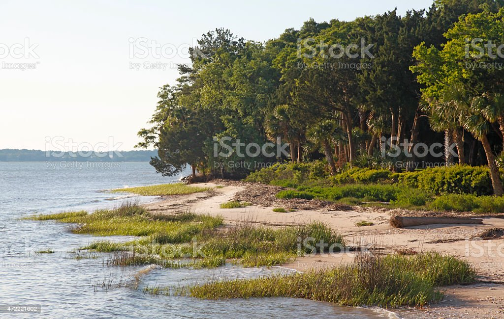 Daufuskie Island Daufuskie Island - a Natural Wonder - SC 2015 Stock Photo