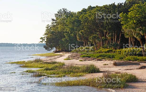 Daufuskie Island Stock Photo - Download Image Now