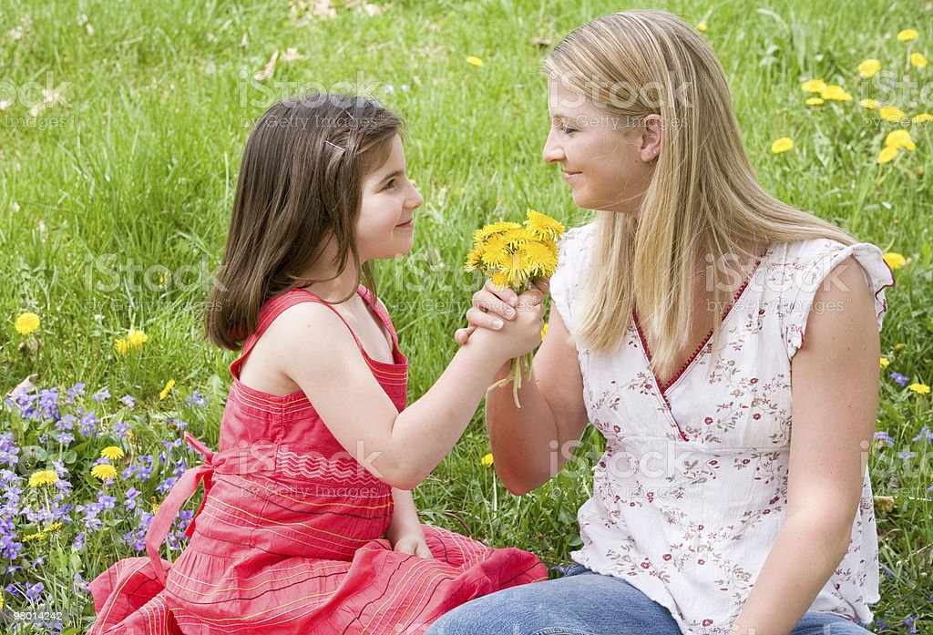 Daughter Giving Mother Flowers royalty-free stock photo