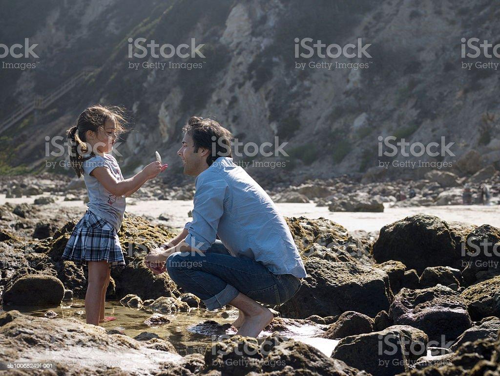 Daughter (6-7) showing shell to dad at seashore royalty-free stock photo