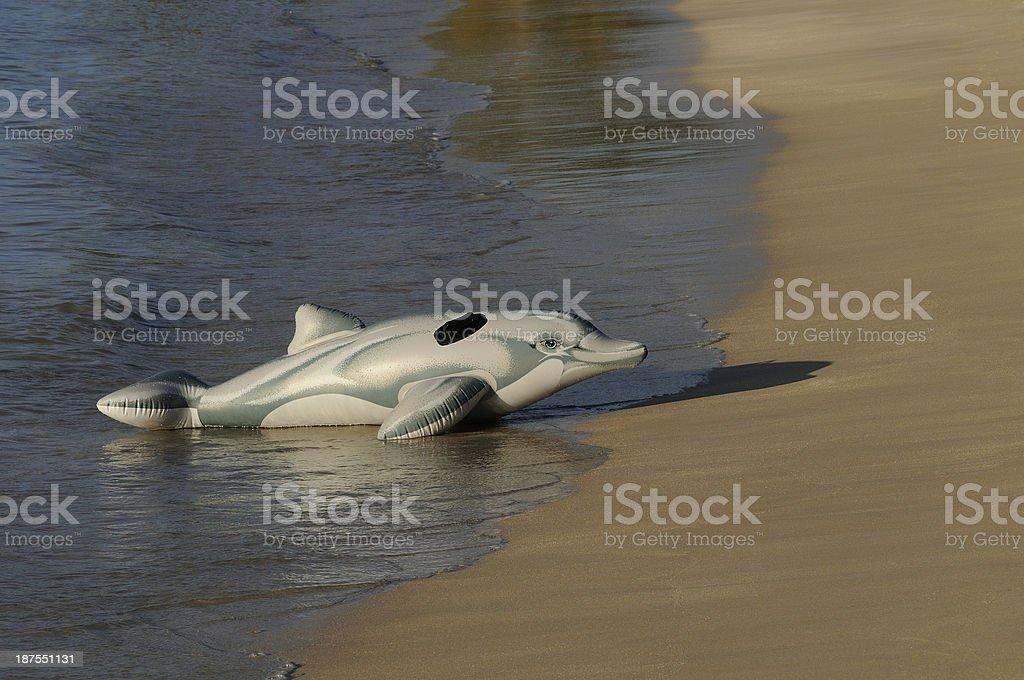 dauphin échoué royalty-free stock photo