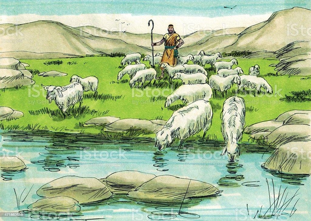 David and Sheep stock photo