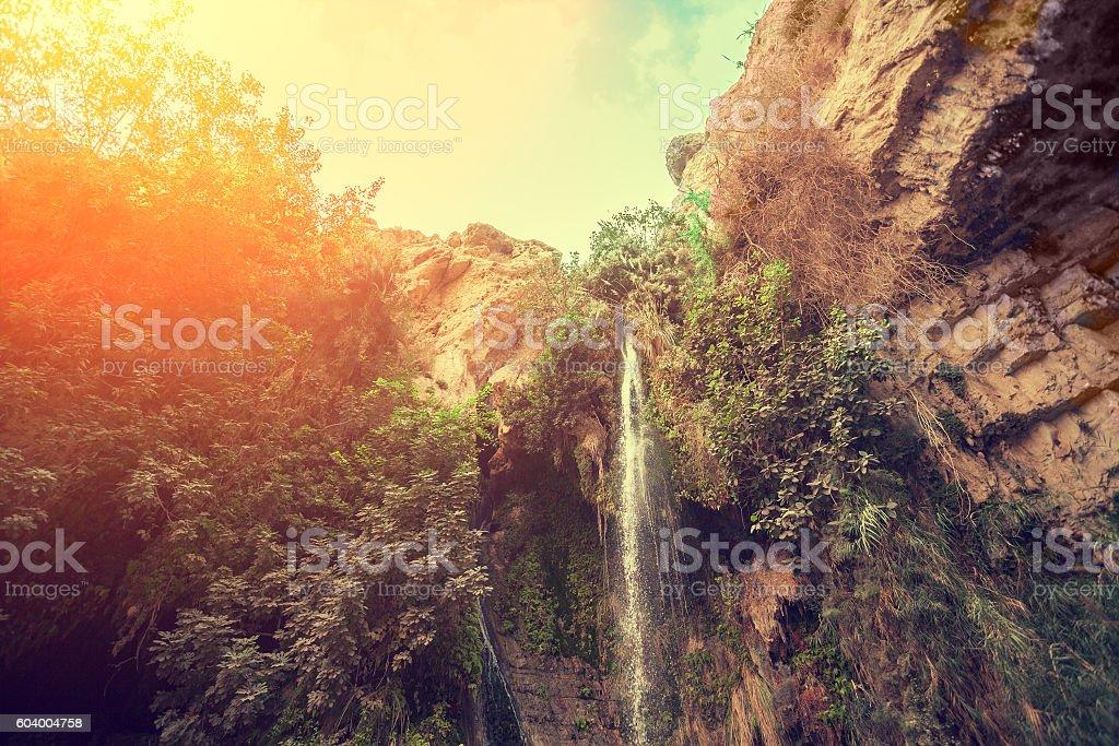 David's waterfall in Ein Gedi Nature Reserve stock photo