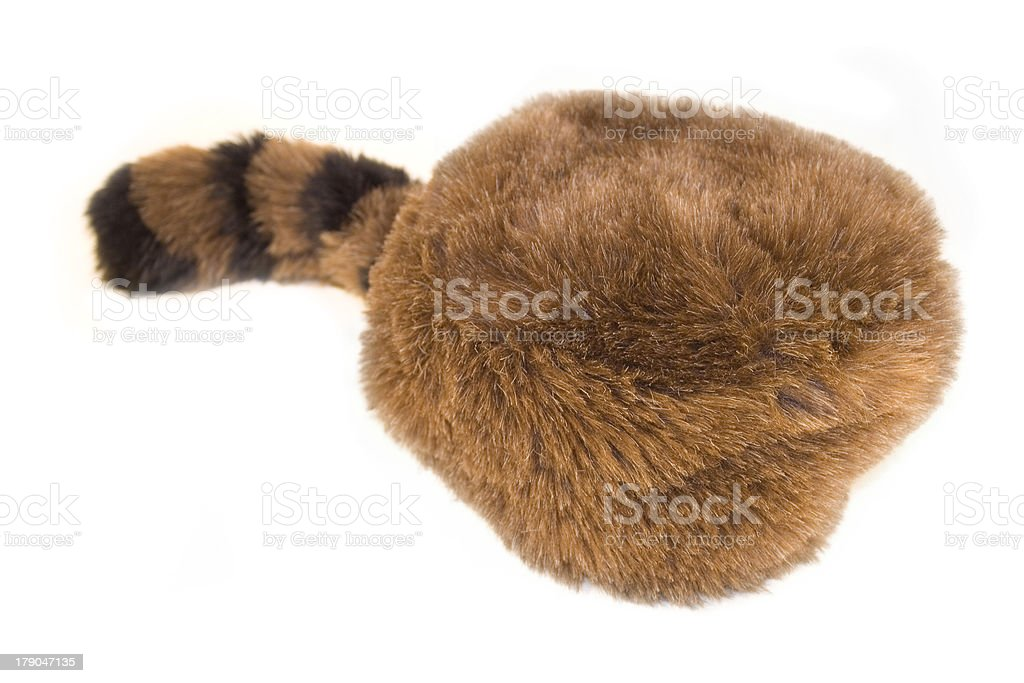 Davy Crockett style racoon hat stock photo