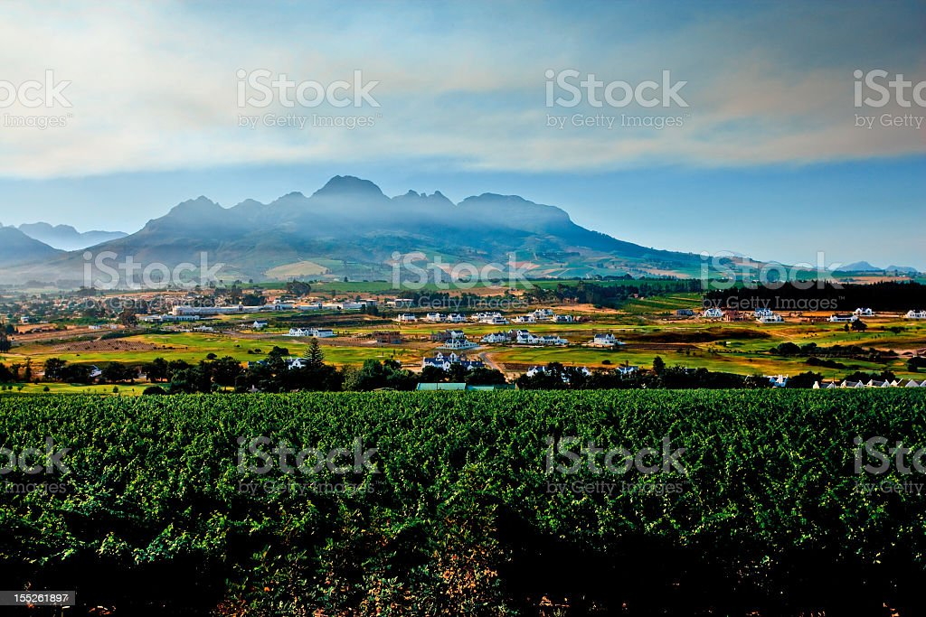Dawn at a vineyard in Stellenbosch, South Africa An image of the majestic mountains surrounding the South African wine region in Stellenbosch, located in the Boland District.  Early morning clouds and fog surround the mountain.  Stellenbosch is famous for their outstanding wines and beautiful surroundings. Africa Stock Photo