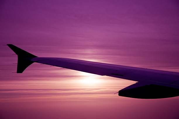 Dawn Flug – Foto