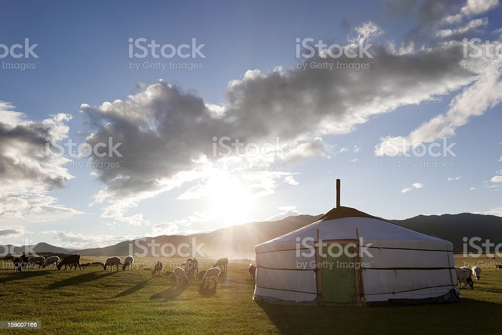 Dawn in a Ger. Mongolia stock photo