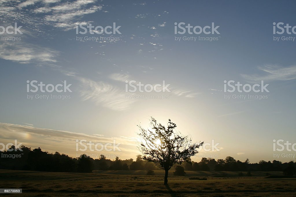 Dawn in England royalty-free stock photo