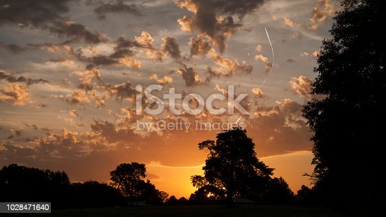 Morning sunlight and low hanging clouds make a beautiful cloudscape with trees silhouetted in the distance.