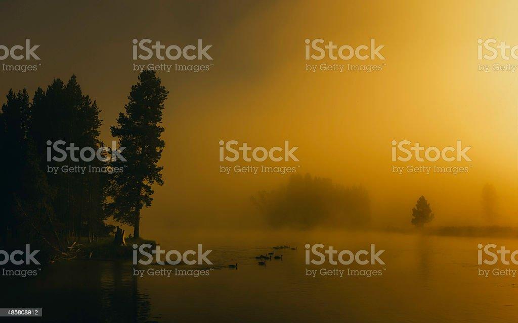 Dawn mist over Yellowstone River, Montana, UAA. stock photo